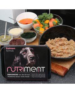 Nutriment Salmon