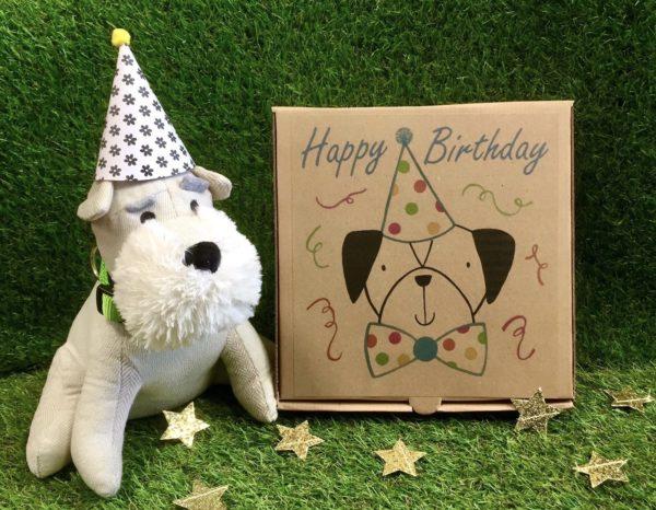 Benji's Birthday Box